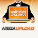 Все данные с Megaupload могут удалить уже на этой неделе