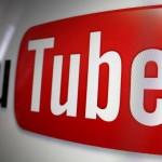 Youtube распознал птичьи песни как «авторский материал»