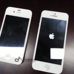 «iPhone 5» включили