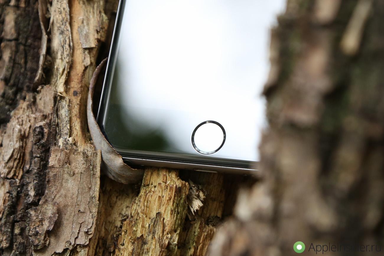 Владельцы iPhone 6 недовольны «хрустящей» кнопкой Home