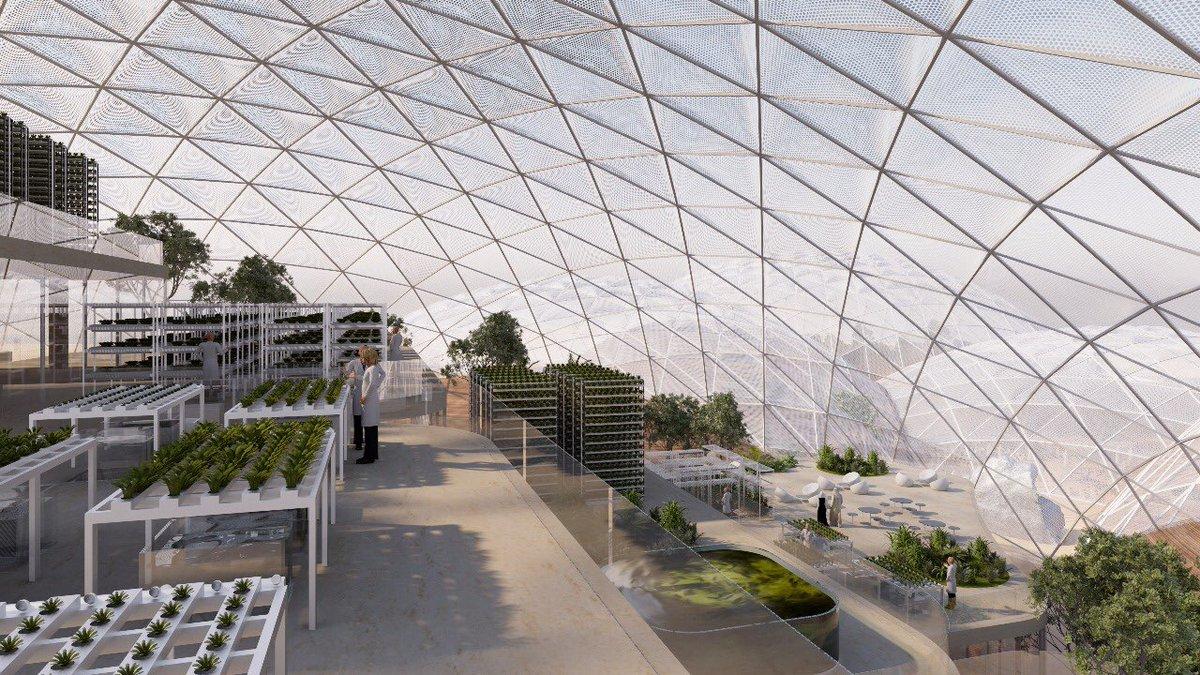 такое термобелье проект марсианский город в дубае для занятий